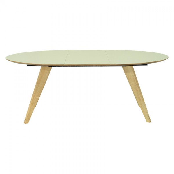 RYDER OVAL EXTENDABLE TABLE - FRM5093
