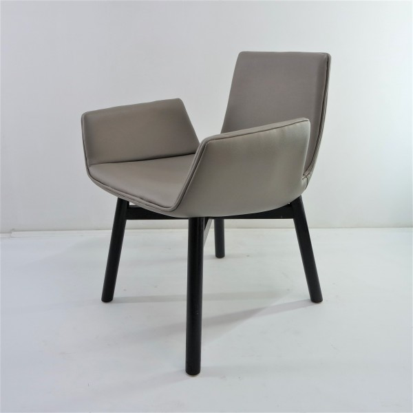 DINING CHAIR  FRM02231