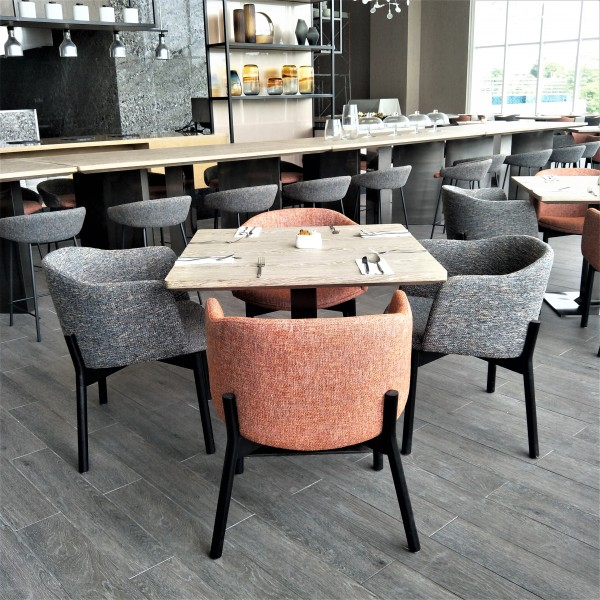 DINING CHAIR  FRM02241